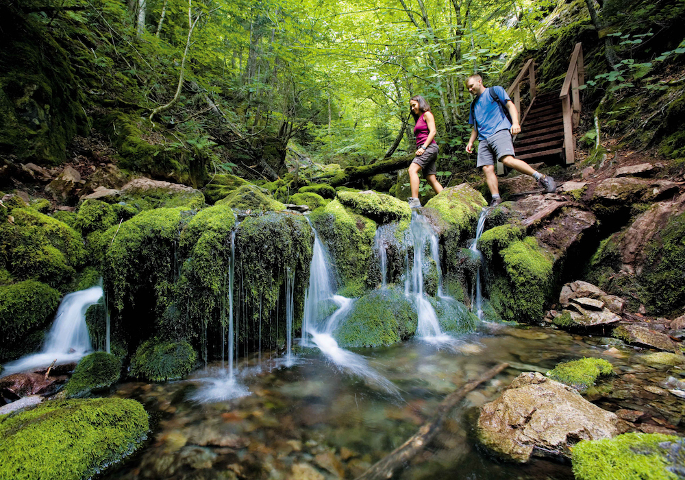 7 Things to Do in New Brunswick 4
