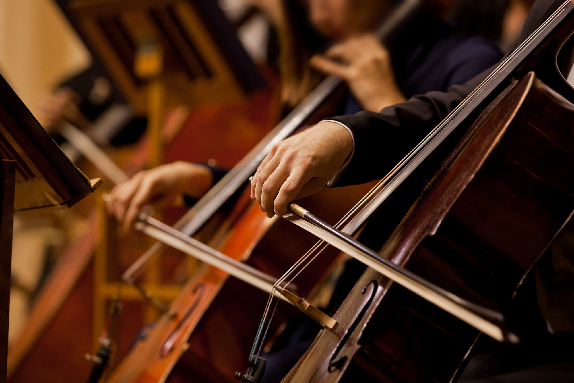 Hands of the man playing the cello