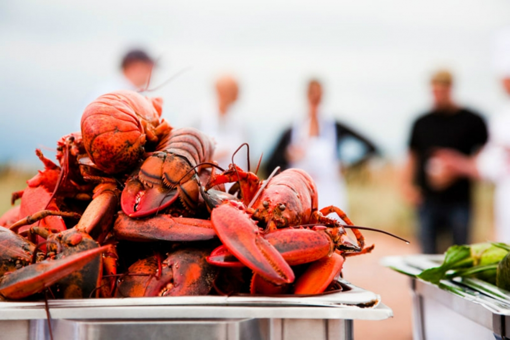 How to Crack a Lobster and Other Maritime Must Knows