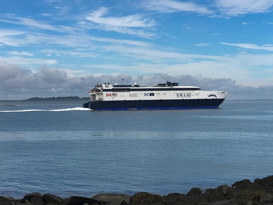 cat-ferry