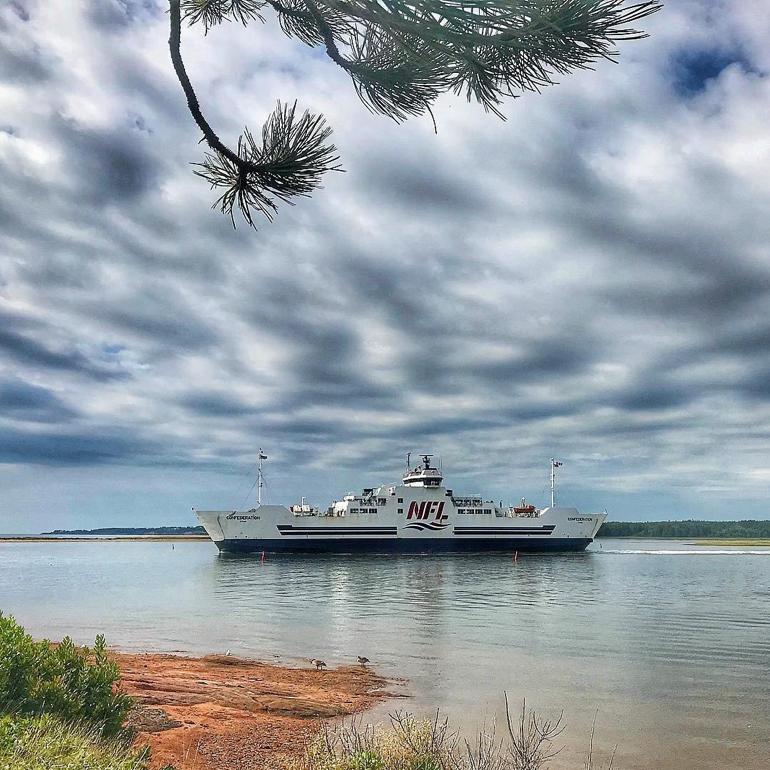 nfl-ferry