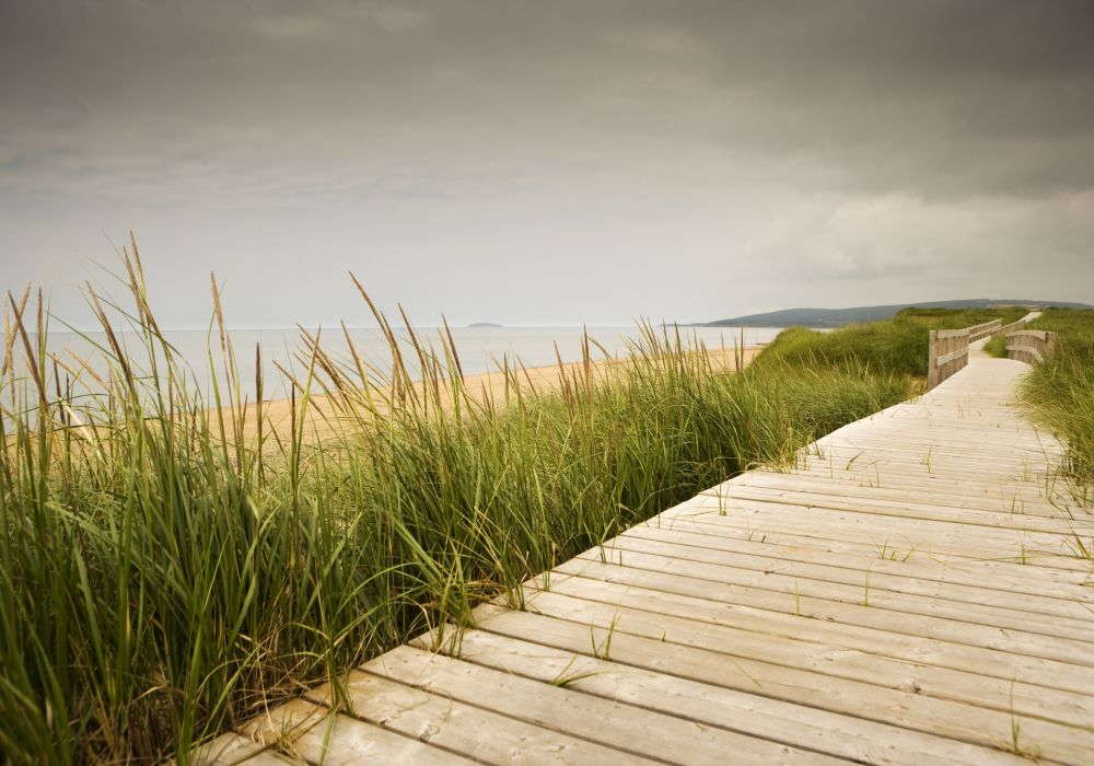 Wooden trail to the ocean shore