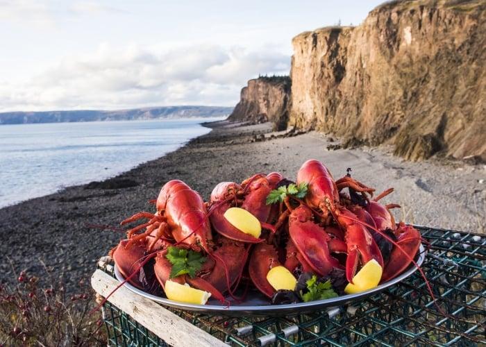Nova Scotia lobster