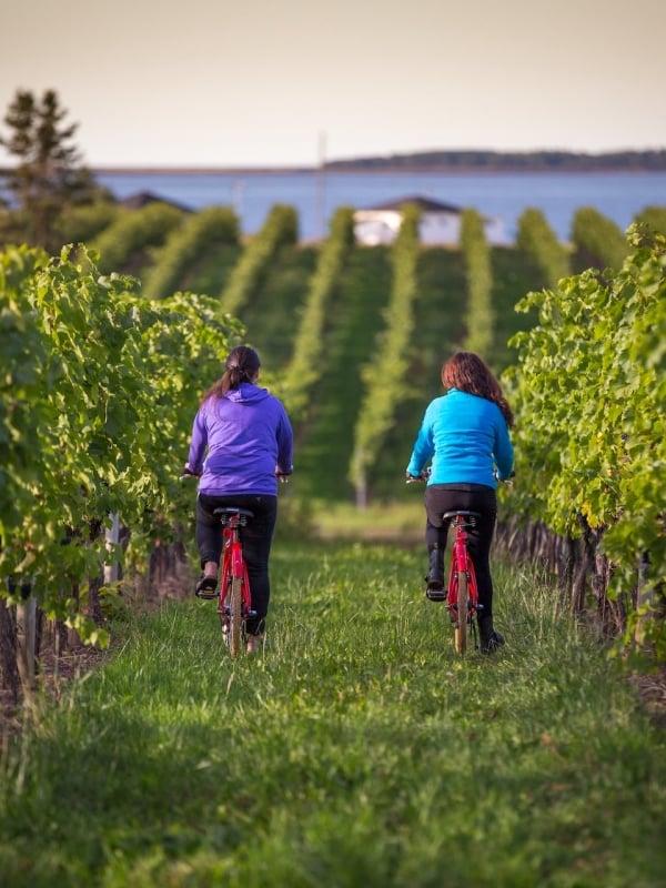 jost wineries