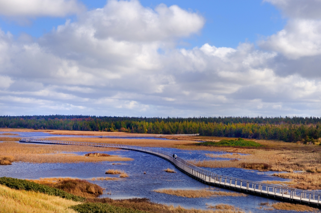 Your Picturesque PEI Vacation
